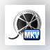 Bigasoft MKV Converter