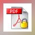 Lizard Safeguard Secure PDF Viewer