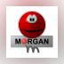 Morgan M-JPEG2000 codec