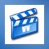 Video Vision