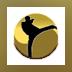 Tae Kwon Do World Champion