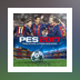 PES Professionals Patch