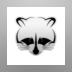 Raccoon Bot