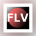 Winner FLV Video Converter