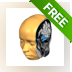 BrainVoyager Brain Tutor